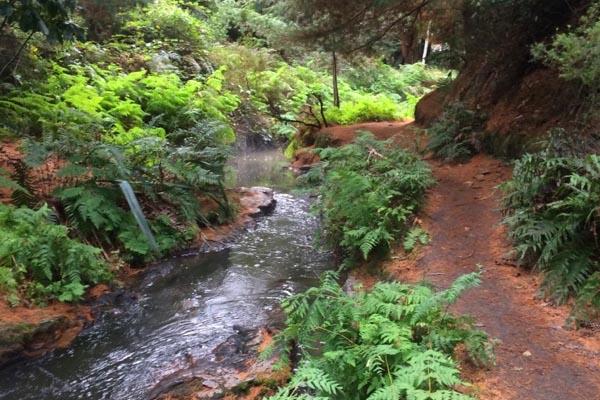 Kerosene Creek Nieuw Zeeland