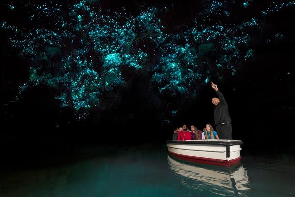 Waitomo Cave New Zealand